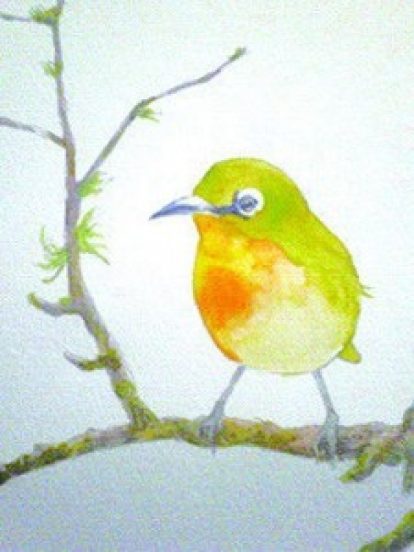 体験:赤・青・黄・白の4色で描く! 大人の水彩画教室 11月