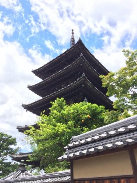 単発:瑞田和尚のやさしい仏教入門 ~お寺巡りを100倍楽しくする方法~ 6/28